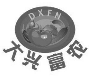 大兴富农 DXFN